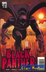 Who is the Black Panther? Part One